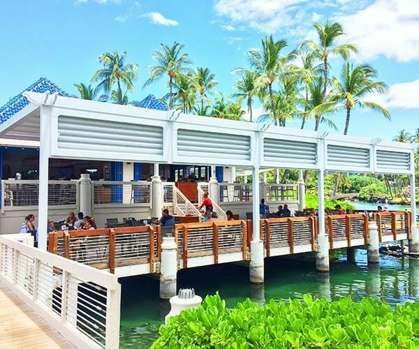 Vibrant palm trees rise above two-tiered restaurant-bar patio over water with white roof structure and stairs between levels and wood railings in foreground with vibrant green shrubs