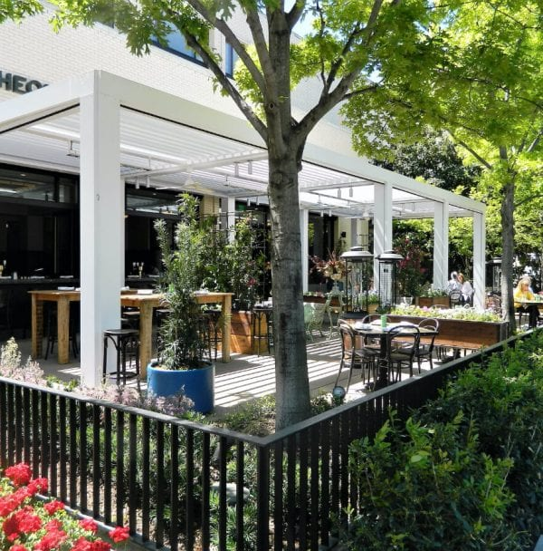 Outdoor restaurant patio with white pergola structure and living trees providing shade for dining tables and chairs of various shapes and sizes
